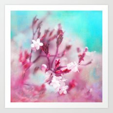 WHITE MACRO FLOWERS Art Print