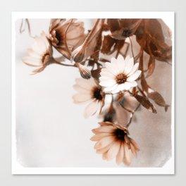 Flowers Art Poster Canvas Print