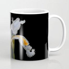 Elegant Iris Japonica / Fringed Iris Flower Coffee Mug