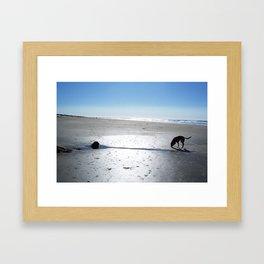El Perro En La Playa Framed Art Print