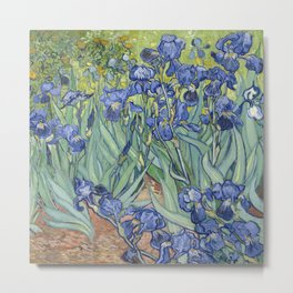 Irises 1889 Vincent Van Gogh Metal Print