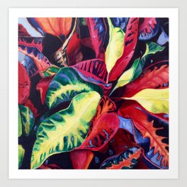 Tropical Rainbow Plant Art Print
