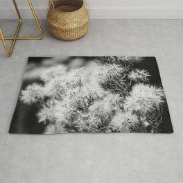 Black and White Desert Broom Rug