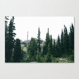 Forest XXVI Canvas Print
