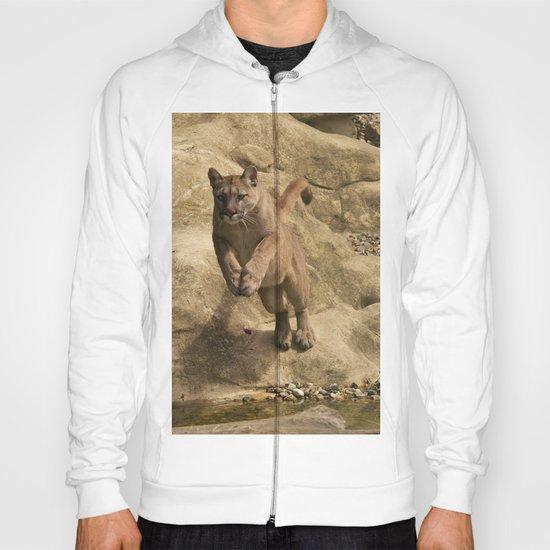Puma Jumping Hoody