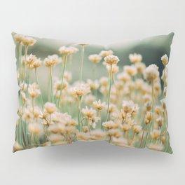 Vintage Chamomile Wildflowers Pillow Sham
