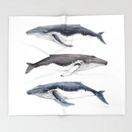 Humpback whales Throw Blanket