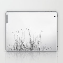possibly Laptop & iPad Skin