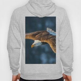 Marvelous Gracious American Bald Head Eagle Majestic Flying Gliding Through Air Close Up Ultra HD Hoody