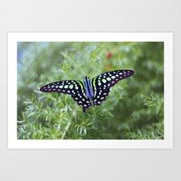 Butterfly 1 - Iridescent Green Art Print