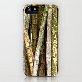 Wild Bamboo iPhone Case