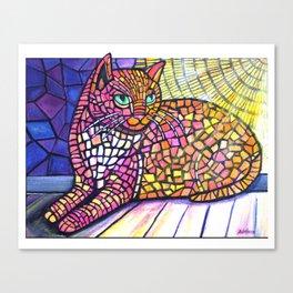 Sunspot cat Canvas Print