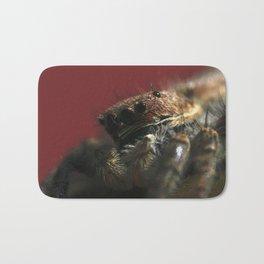 Spider on Red Bath Mat