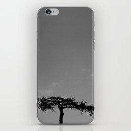 it seems like a bonsai iPhone Skin