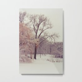 Winter Wonderland Number 5 Metal Print