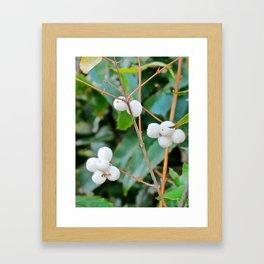 Greenery and Berries Framed Art Print