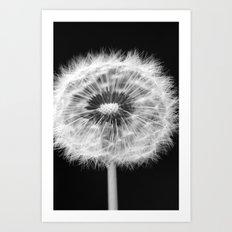 missing dandelion Art Print