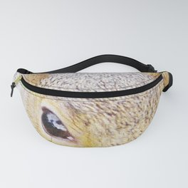 The many faces of Squirrel 5 Fanny Pack