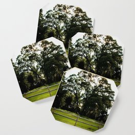 Country Life Coaster