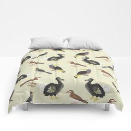 medieval illustration BIRDS Comforters