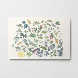 Maine Flora (Light) Metal Print