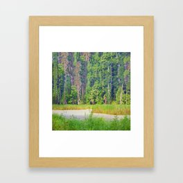 Within the Polder Waters Framed Art Print