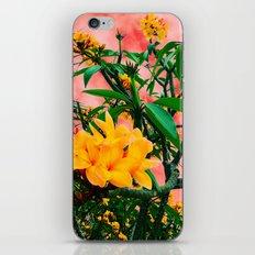 Plumeria in Storm iPhone Skin