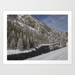 Carol Highsmith - Snow Covered Conifers Art Print