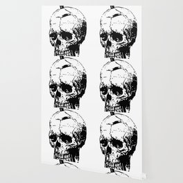 The Skull of Phineas Gage Vintage Illustration Wallpaper