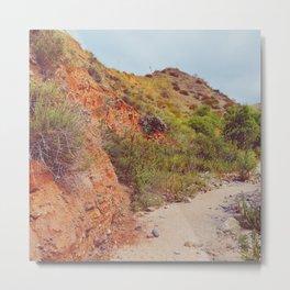 Desert Trail Metal Print