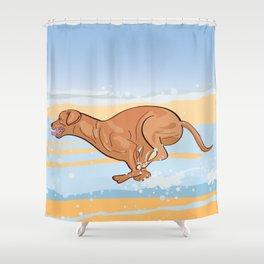 Beach Vizsla Shower Curtain