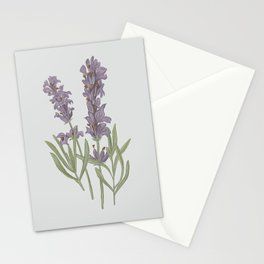 Lavender Flower Illustration Stationery Cards