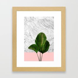 Palm Plant on Marble and Pastel Wall Framed Art Print