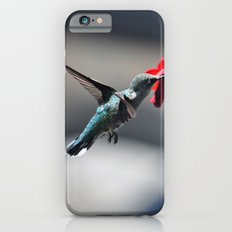 Hummingbird at the Flowers iPhone 6s Slim Case