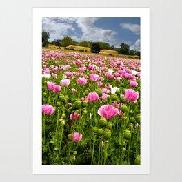 Poppy fields in Holland Art Print