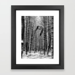 owl in the woods Framed Art Print