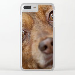 Brown dog portrait Clear iPhone Case