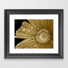 Daisy Drops Framed Art Print