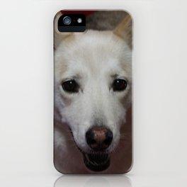 Raven 1 iPhone Case