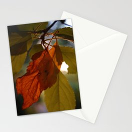 Mending Things Stationery Cards