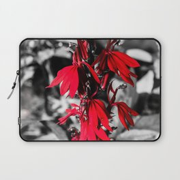 Cardinal Flower Laptop Sleeve
