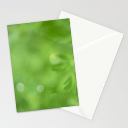 Fresh Morning 415 Stationery Cards