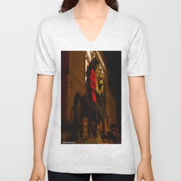 Chicago's Lions in Winter #3 (Chicago Christmas/Holiday Collection) Unisex V-Neck