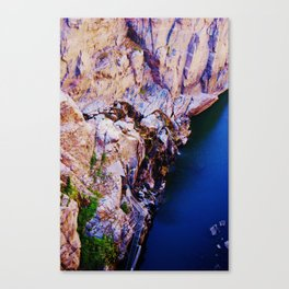 Water Finds a Way Canvas Print