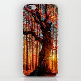 Majestic woods iPhone Skin