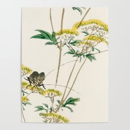Yellow Plant With Bug - Vintage Japanese Illustration Poster