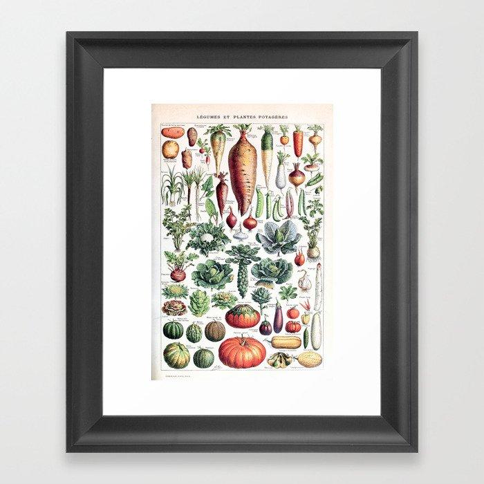 Adolphe Millot - Légumes pour tous - French vintage poster Gerahmter Kunstdruck