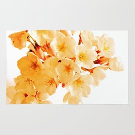 WARM BLOSSOMS Rug