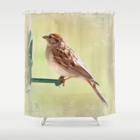 sparrow Shower Curtains featuring Chipping Sparrow by Christine Belanger