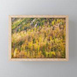 Autumn Trees in Berchtesgaden National Park, Germany Framed Mini Art Print